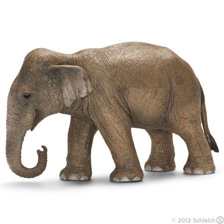 Фигурка Азиатский слон самка Schleich. Размер игрушки: Д - 13.5 см. Ш - 5.5 см. В - 8.5 см.  Вес игрушки: 240 гр. Фигурки Schleich выполнены из каучукового пластика с максимальной точностью, каждая фигурка раскрашивается вручную.Азиатский слон, самка – животные, которые прекрасно приручаются, их часто используют в качестве рабочей силы. Азиатские слоны живут в семейных группах, которые составляют от двух до десяти слонов.
