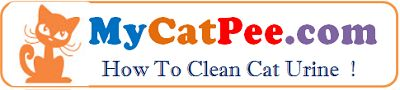 Special Sanitary Care for Long Haired Cats Cat Pee | Cat Urine | How to clean Cat Urine !