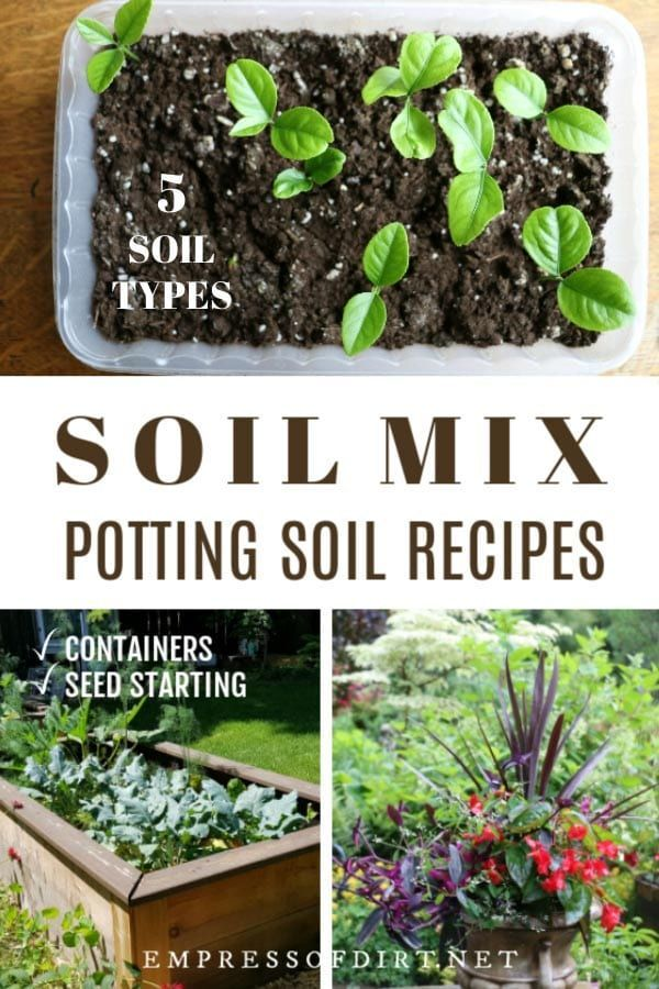 5 Recipes For Blending Your Own Soil Mixes With Images Garden