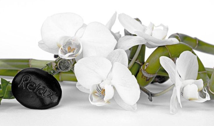 Tenha um exelente fim de semana! São os desejos da www.interflora.pt Dias de Relax #opoderdasflores #flores #instagood #roses #branding #success #follow #spring #profissional #primavera #hand #business #happy #marketing #instagramers #brand #Interflora #interflorapt