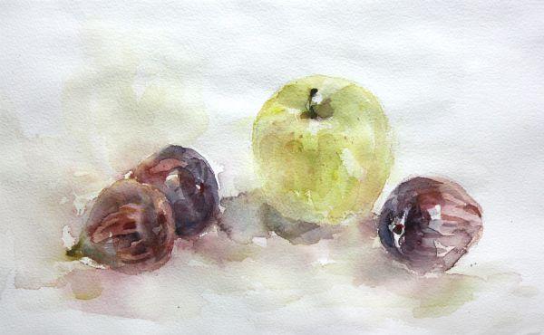 いちぢくとりんご   絵とガーデン・アンの庭