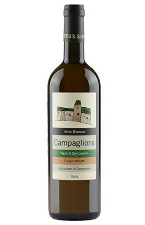 Campaglione Bianco. Vigne San Lorenzo. Da uve 100% Trebbiano macerate sulle bucce per 4 giorni e fermentate in acciaio con i propri lieviti...