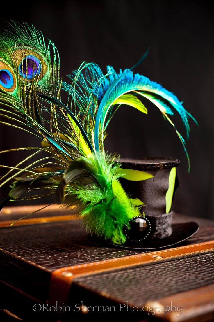 17 Best images about Top Hats on Pinterest