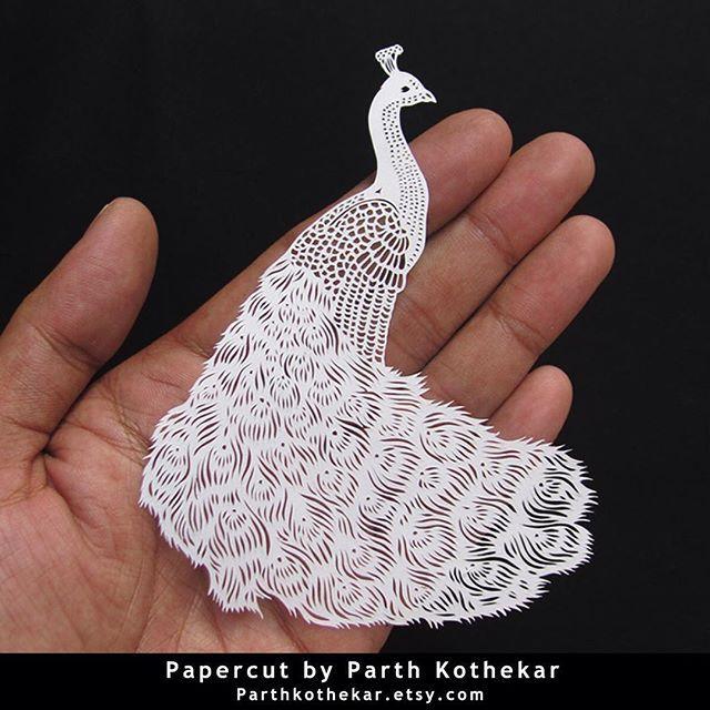 #intricate #miniature #papercut #peacock #peafowl #handcut #paper #craft #paperlove #papercuts #papercraft  #illustration #follow #etsy #shop #parthkothekar #etsyseller #etsyshop