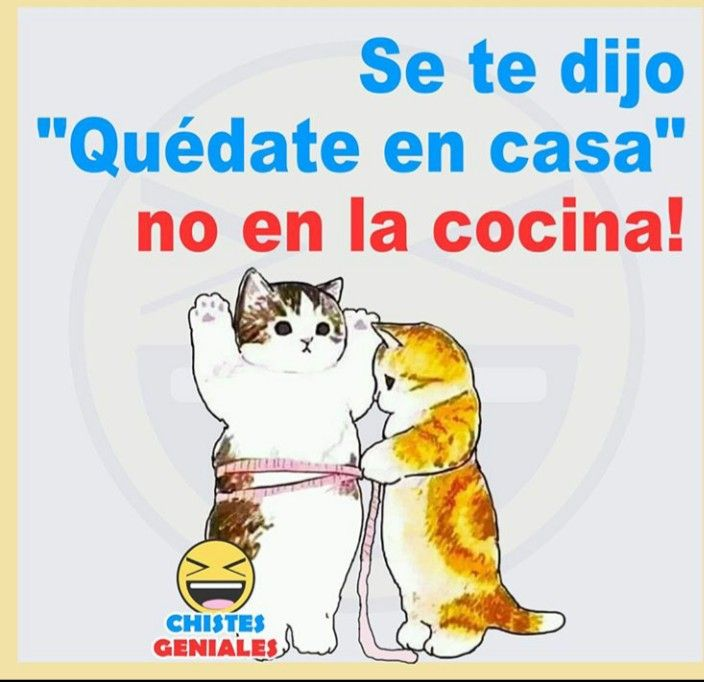 Pin By Claudia Niz On Humor Memes Humor Jokes