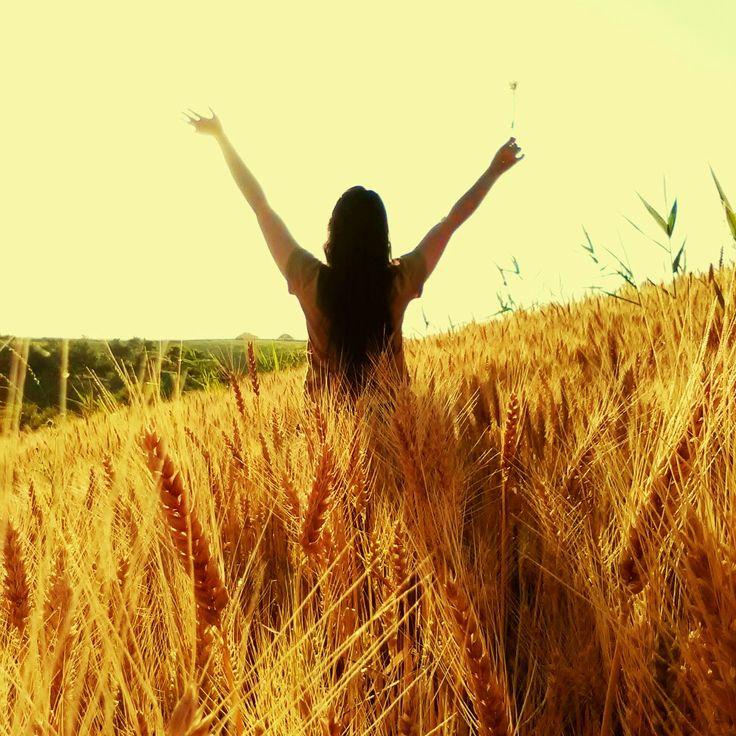 Beautiful God's creation #wheatfield