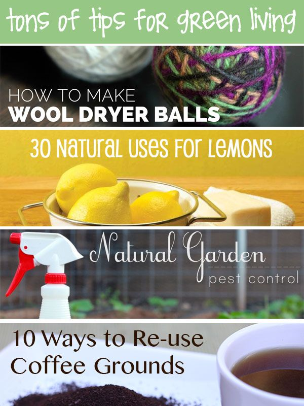 Tons of Tips for Green Living   creative gift ideas
