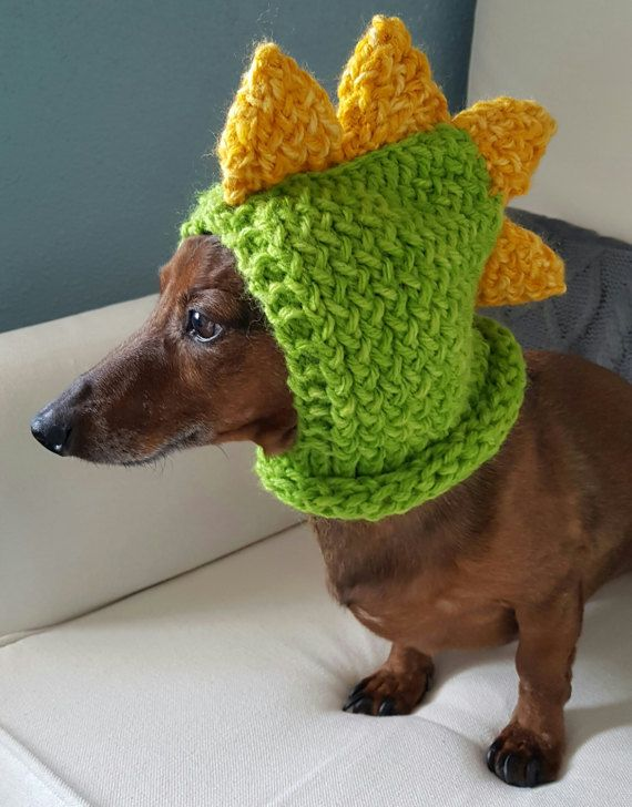Keep your furry friend warm and cozy in this cute dinosaur hood! Perfect for those chilly fall and winter walks or use as a costume. Handmade in chunky yarn in Lime. Made for a small dog. Model is a Miniature Dachshund weighing approx. 12.5lbs. Hood is stretchy and could fit a slightly larger breed.