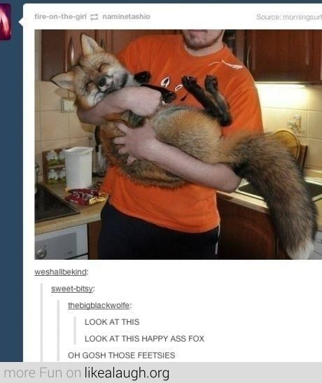 What a happy fox