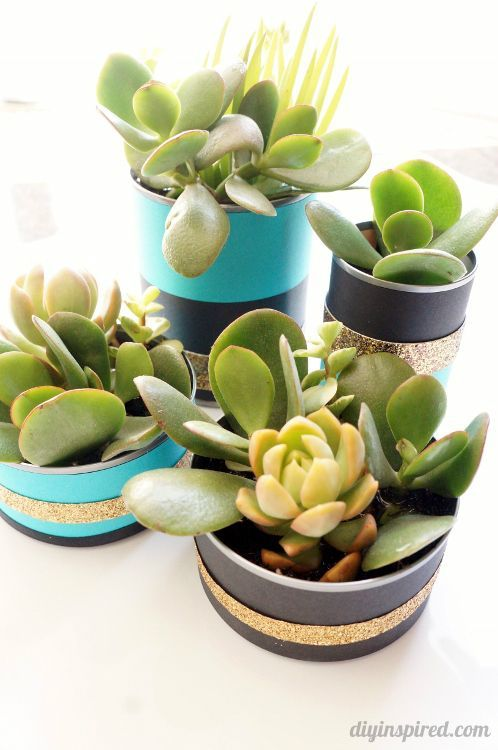 Recycled Can Centerpieces with Succulents for a 40th Birthday Party