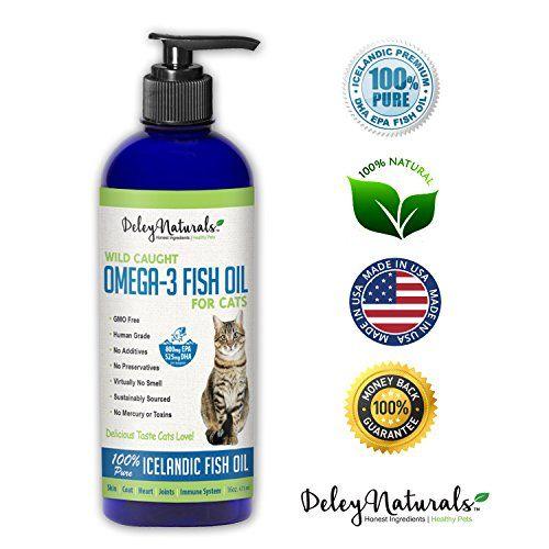 Best 25 omega 3 6 ideas on pinterest omega 3 fruit for Omega 3 fish oil benefits skin