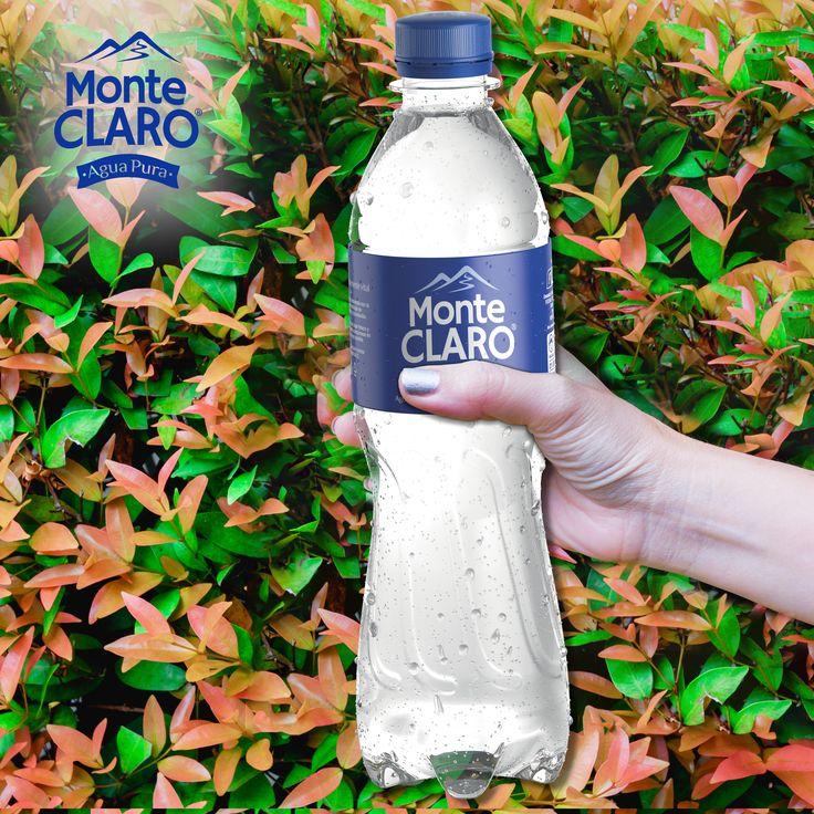 ¡Un lunes diferente!  Ponle un poco de frescura a tu lunes con Monte Claro y date cuenta del cambio.  #AguadeVida