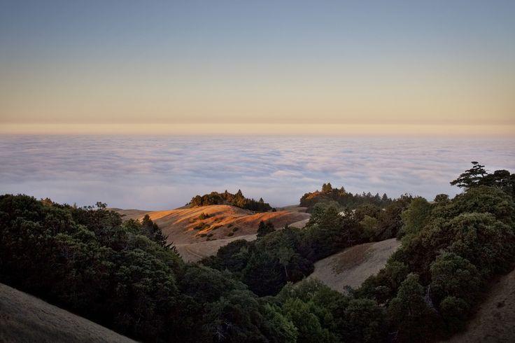 Mount Tamelpais, Marin Country, California