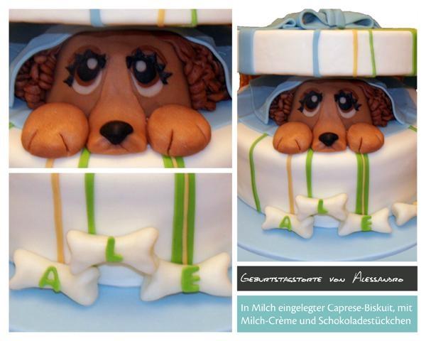 Birthday Cake Lilly , dog
