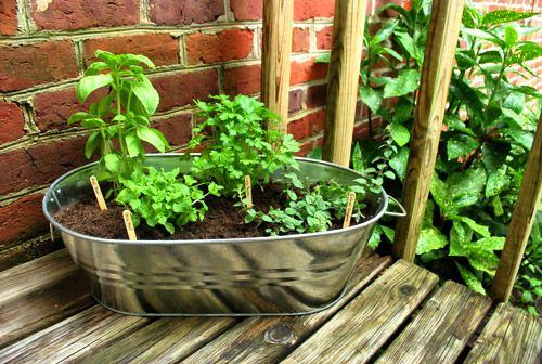 Cheap metal bin turned into an herb garden.  Thinking I want to go this route with my herbs.  Simple and portable.