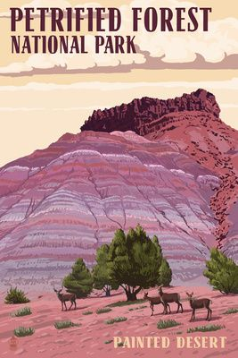 Painted Desert - Petrified Forest National Park - Lantern Press Poster