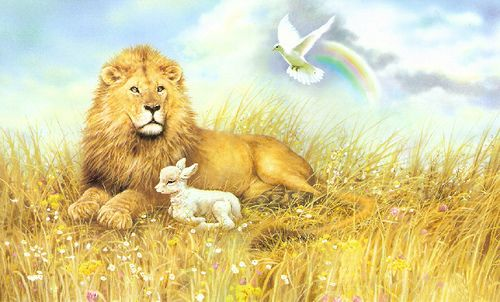Lion, lamb and dove