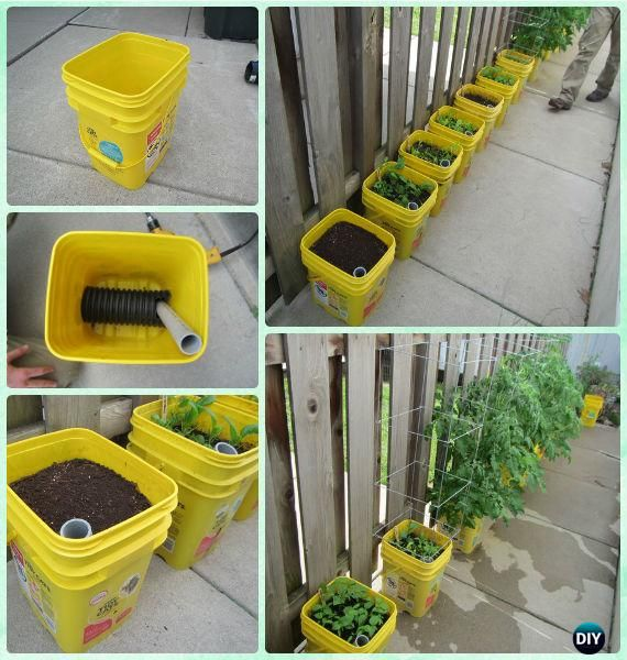 DIY Self-watering Container Garden Instructions - Gardening Tips to Grow Tomatoes In Containers