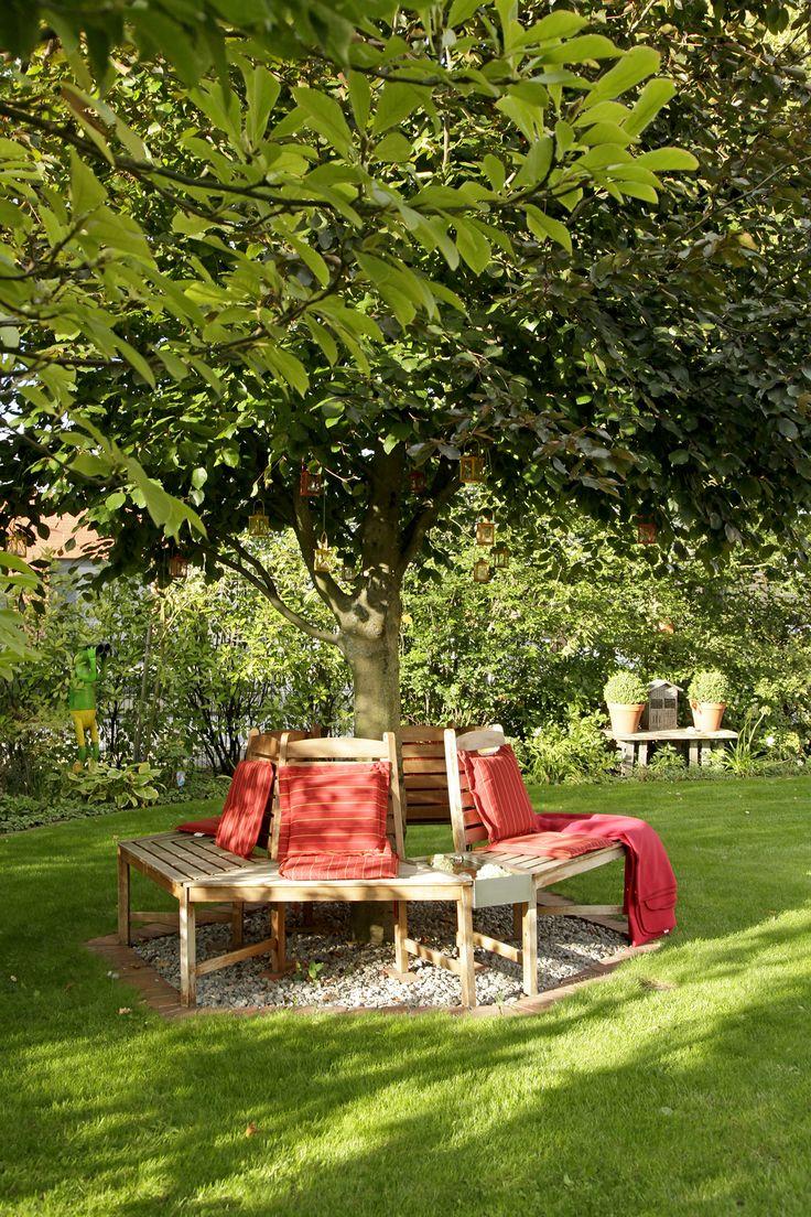 Schattiger Sitzplatz Unter Einem Baum.
