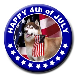 Husky Indepence Day #4thofjuly: Husky Indepence, Adorable Animals, Husky Celebrations
