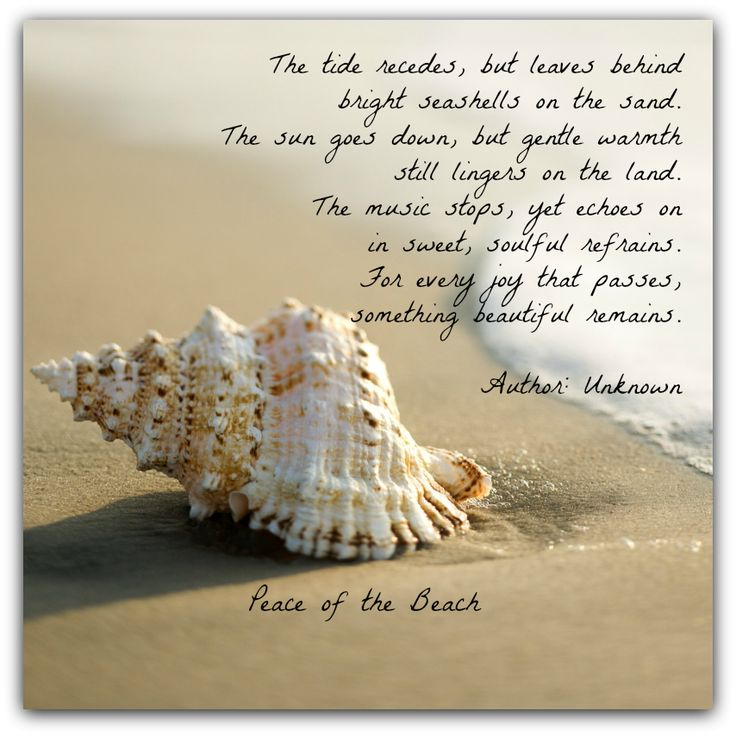 THE TIDE  The tide recedes, but leaves behind bright seashells on the sand. The sun goes down, but gentle warmth still lingers on the land. The music stops, yet echoes on in sweet, soulful refrains. For every joy that passes, something beautiful remains.  Author: Unknown