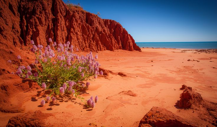 James Price Point, Western Australia, where the red earth meets the ocean. #crikeycamper #CampingMadeEasy