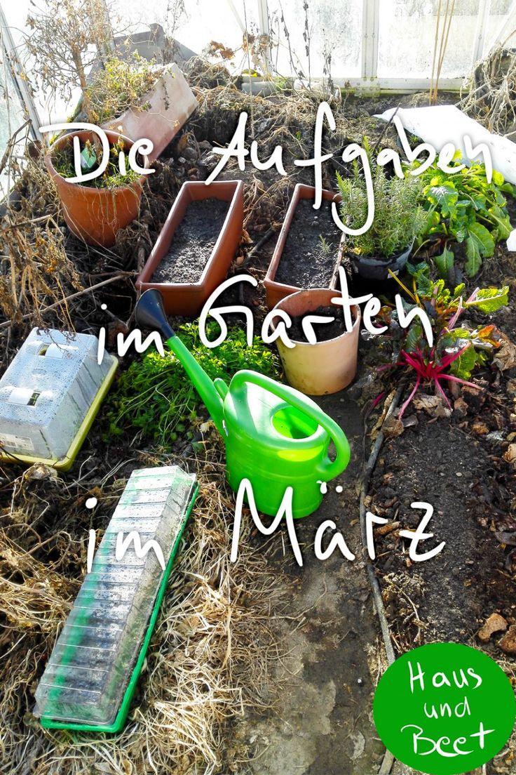 Garten im März. Bereiten Sie Ihre Gemüsebeete vor, ziehen Sie Gemüse auf den Boden   – Haus und Beet – Gartenthemen