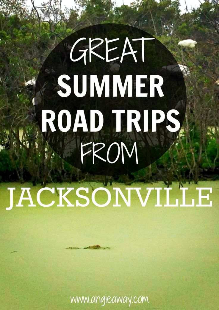 Fun summer road trips from North Florida