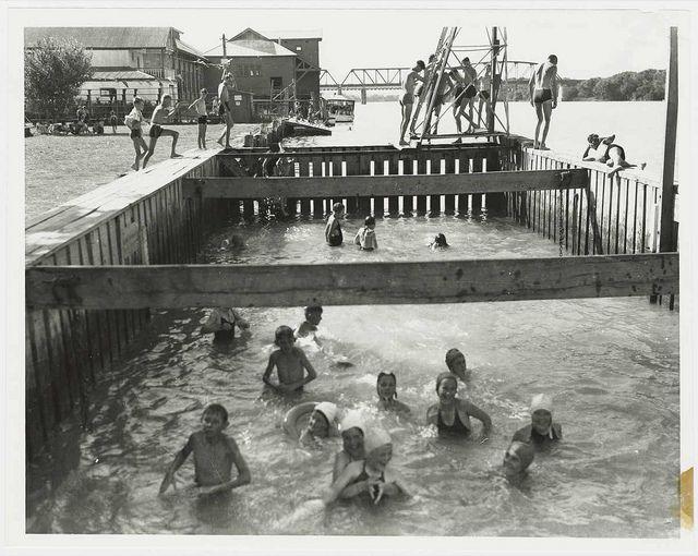 Swimming at Murray Bridge, South Australia, 1950 - Children swimming in a river enclosure.