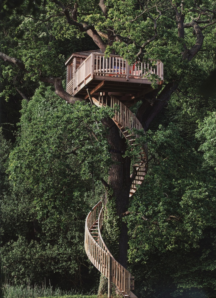 Superb Pine Tree House With Beautiful Wooden Spiral Staircase
