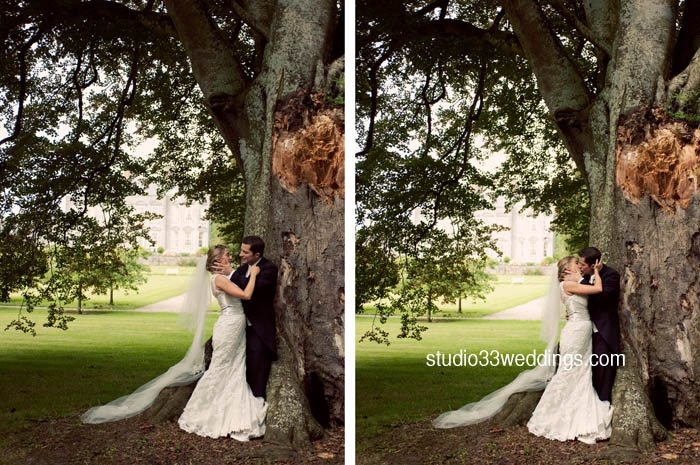 The kissing tree  http://www.studio33weddings.com