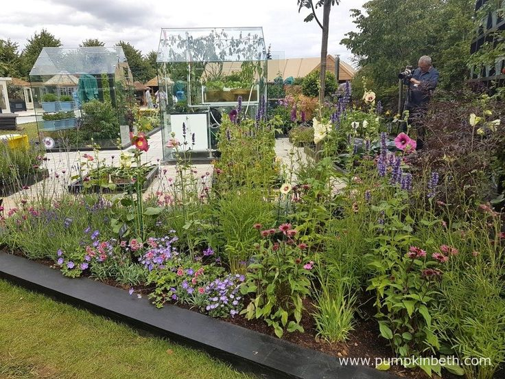 The RHS Kitchen Garden was my favourite garden at the RHS Hampton Court Palace Flower Show 2017. This accessible garden is beautiful, edible, and welcoming to all.