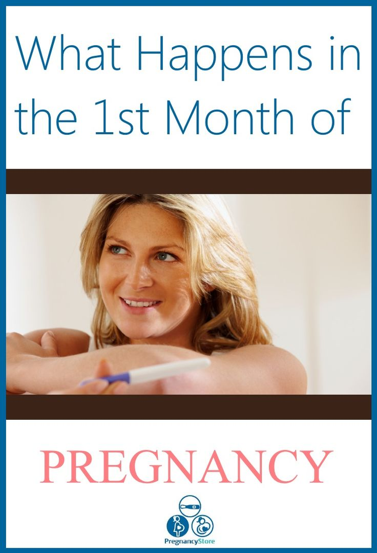 What Happens In A Youtube Minute Infographic: What Happens In The Second Month Of Pregnancy