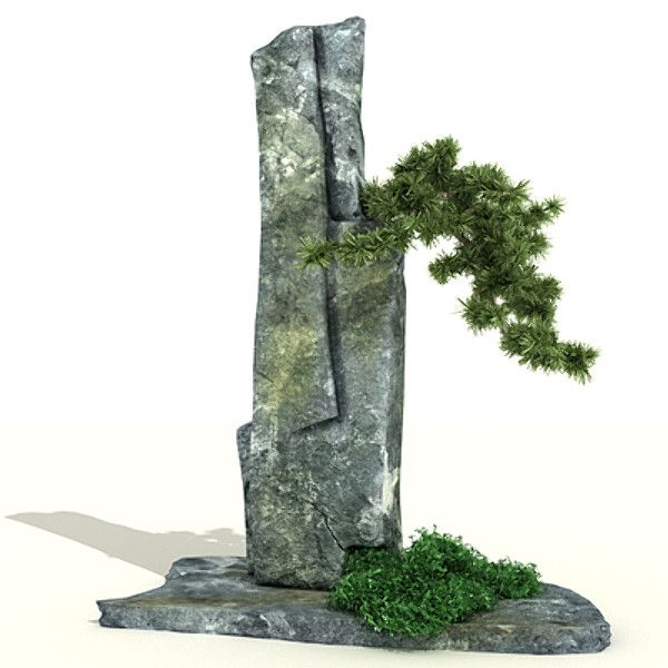 Google Image Result for http://preview.turbosquid.com/Preview/Content_2009_07_13__17_16_56/rock_bonsai_2.jpgebdaf179-93dd-4535-aee8-c373fe121fd2Larger.jpg