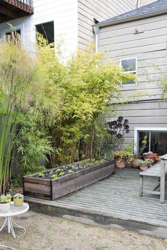 Φράχτες, καφασωτά και παραβάν για ιδιωτικότητα στον κήπο ή το μπαλκόνι!  #DIY #αιωρα #διακοσμησηκηπου #έμπνευση #ιδέες #ιδεεςδιακοσμησης #ιδεεςκηπου #ιδιωτικοτητα #καλαμια #καλαμωτη #καλαμωτηκατασκευη #καλαμωτητοποθετηση #καλαμωτηφωτογραφιες #καφασωτο #κήπος #κηποςφωτογραφιες #κουρτινα #μπαλκονιφωτογραφιες #μπαμπου #φραχτες #φραχτης