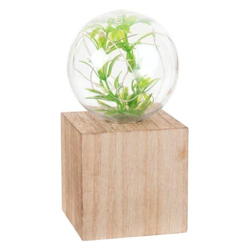 Déco lumineuse terrarium à LED