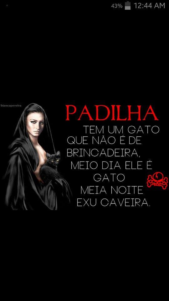 Maria Padilha traz paz e amor!