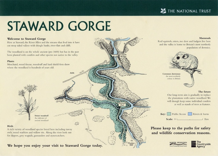 National Trust map of the Staward Gorge