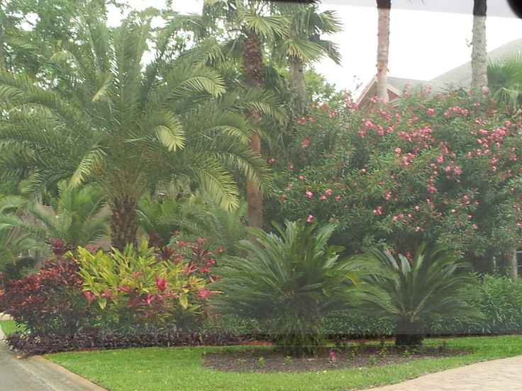Landscaping tropical landscaping ideas for front yard - Front garden ideas tropical ...
