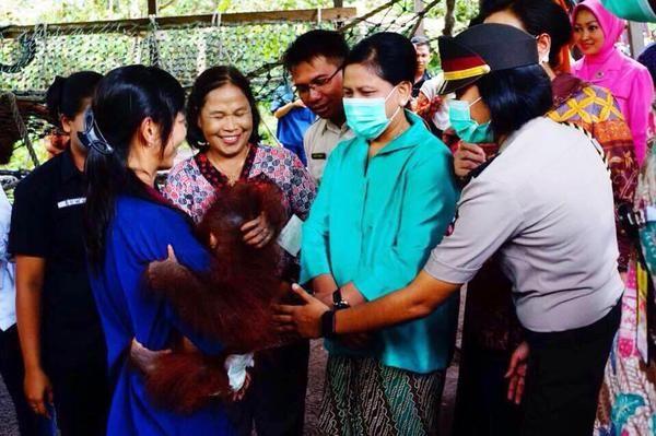 Iriana Jokowi   Pangkalanbun