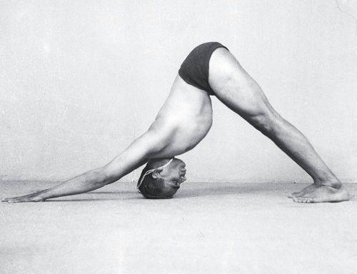 Асаны йоги (картинки и описание)