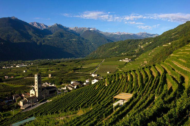 Strada dei vini di valtellina