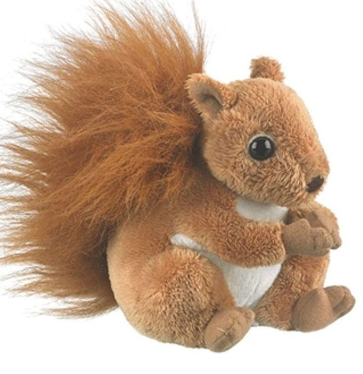 "6"" CC Red Squirrel Plush Stuffed Animal Toy - New #WildlifeArtist"