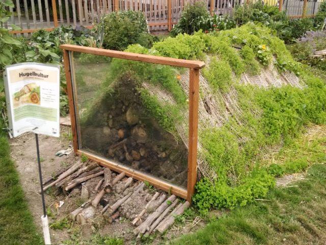 permaculture les buttes de culture une v ritable r volution forestier europe et ancien. Black Bedroom Furniture Sets. Home Design Ideas