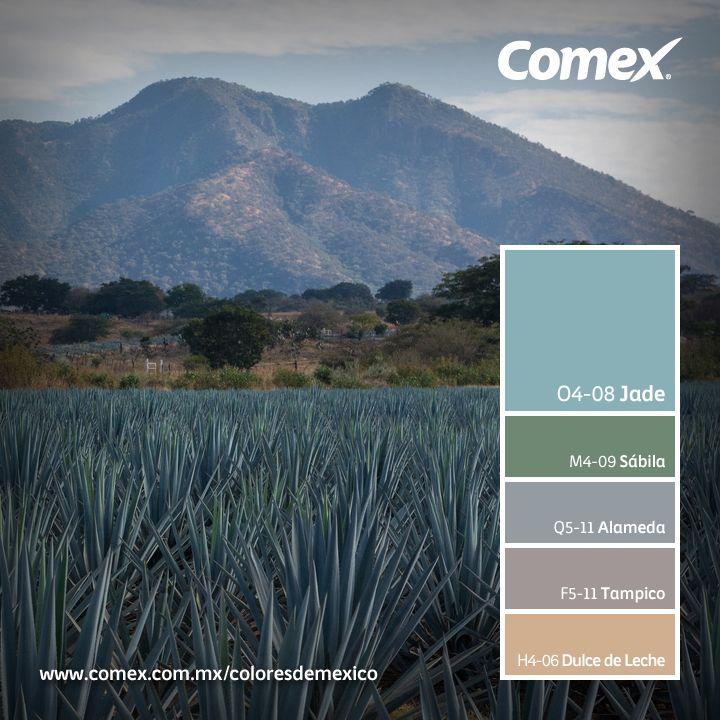 16 Best Images About Colors On Pinterest: 16 Best Images About Comex Mexico Colors On Pinterest