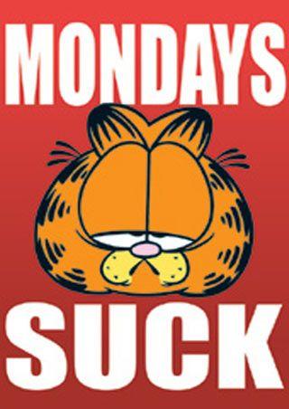 Garfield...that's how I found that cute orange cat. Am I garfield? I THINK I AM!