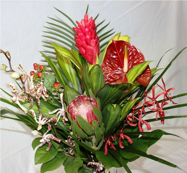 Loving Red Bouquet Ginger, Anthurium, Protea, Pink Tiger Orchid, Black Annie Orchid, Hypericum Berries   $50.00  www.dutchmillflowershop.com
