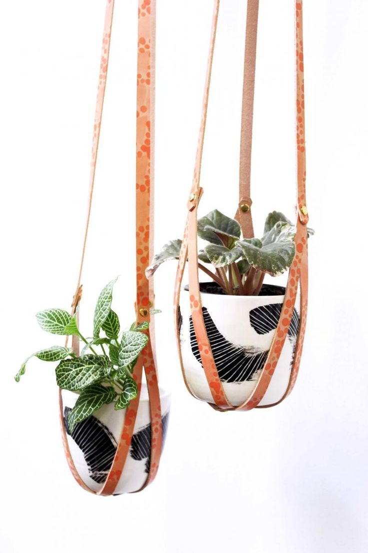 leather-plant holder-hanging-plants