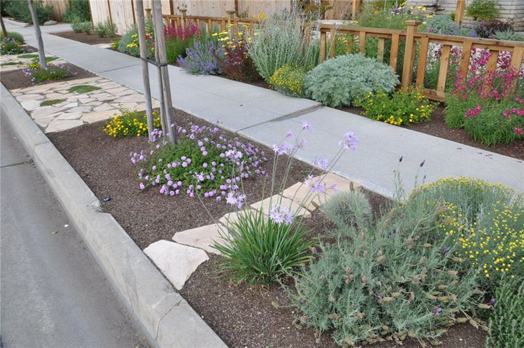 A beautifully xeriscaped parking strip as well as a part for Xeriscaped backyard design