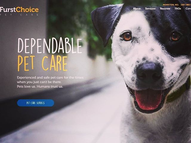 One Of The Last Projects Before Some Exciting Changes At Chulado Petcare Dogwalking Dogsitter Pet Care Dog Walking Instagram